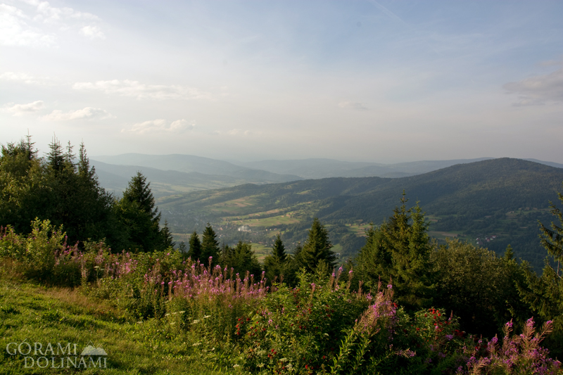 Panorama z Lubonia Wielkiego